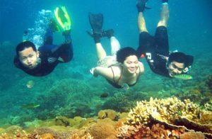 diving pulau pari