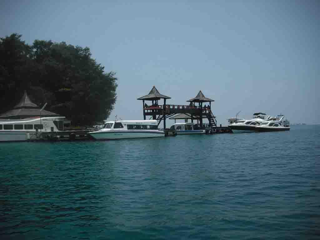Wisata Pulau Sepa Menyelam Di Pulau Seribu